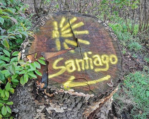 Pilgerwege Deutschland - Zeichen nach Santiago auf Baumstamm