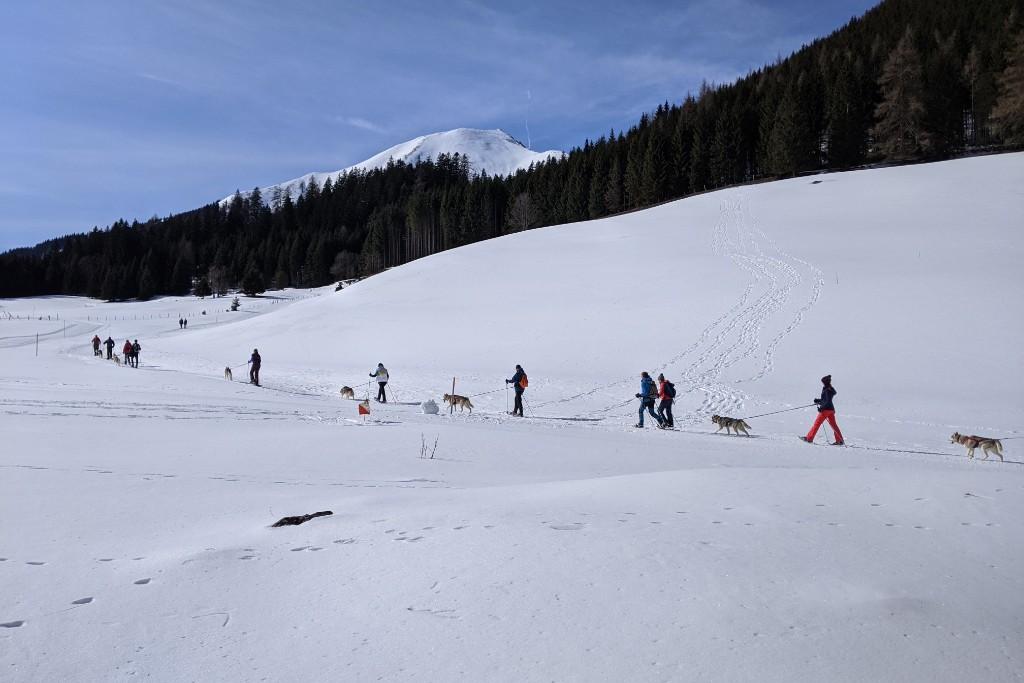Husky Schneeschuhwanderung ©Gepackt