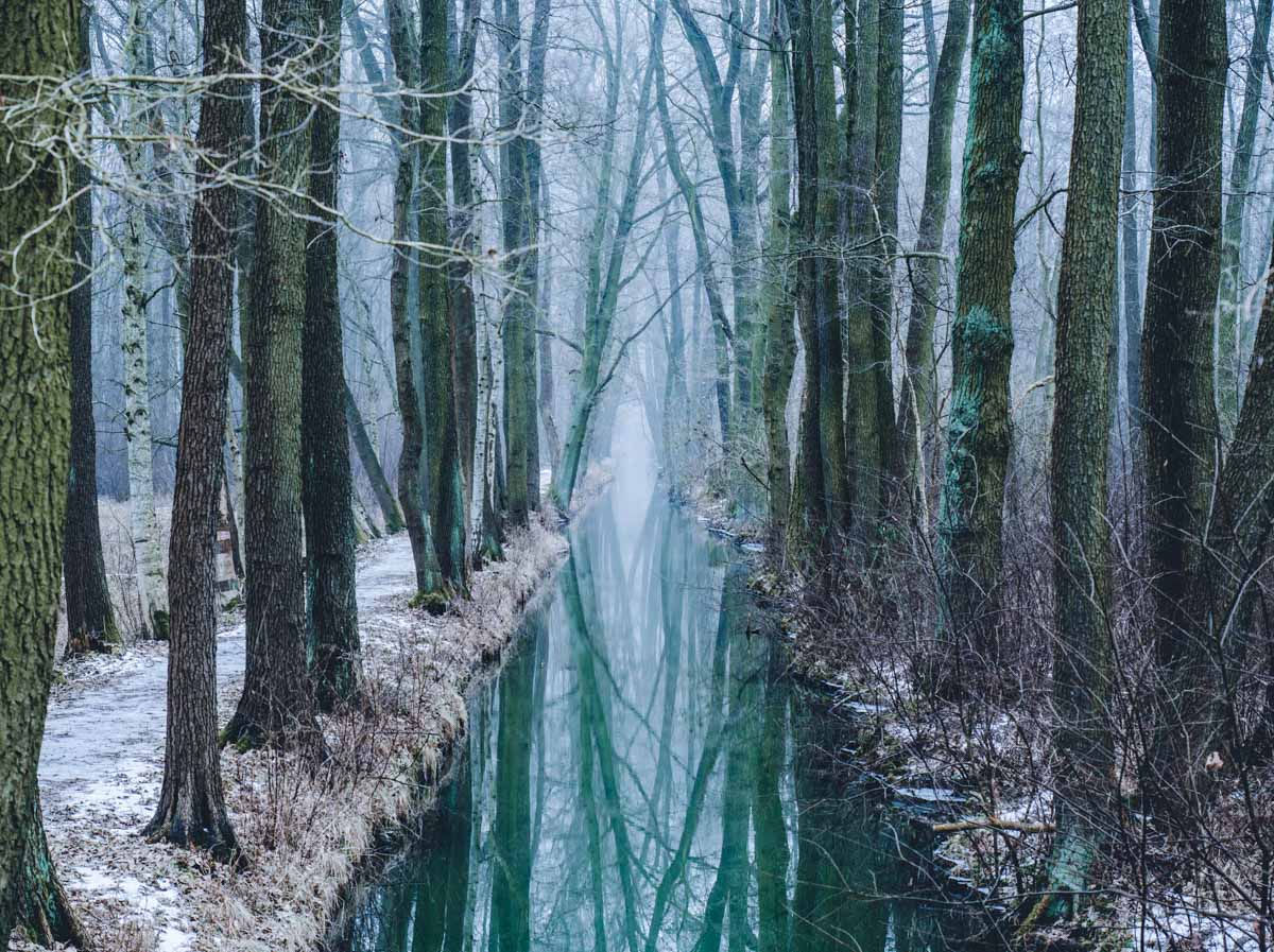 Spreewald im Winter ©blickgewinkelt
