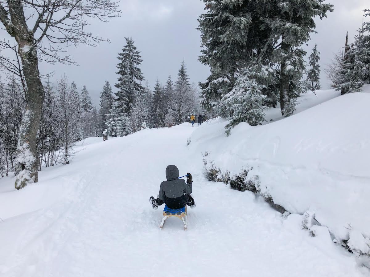 Schlittenfahrt im Bayerischen Wald ©Unterwegs mit Kind