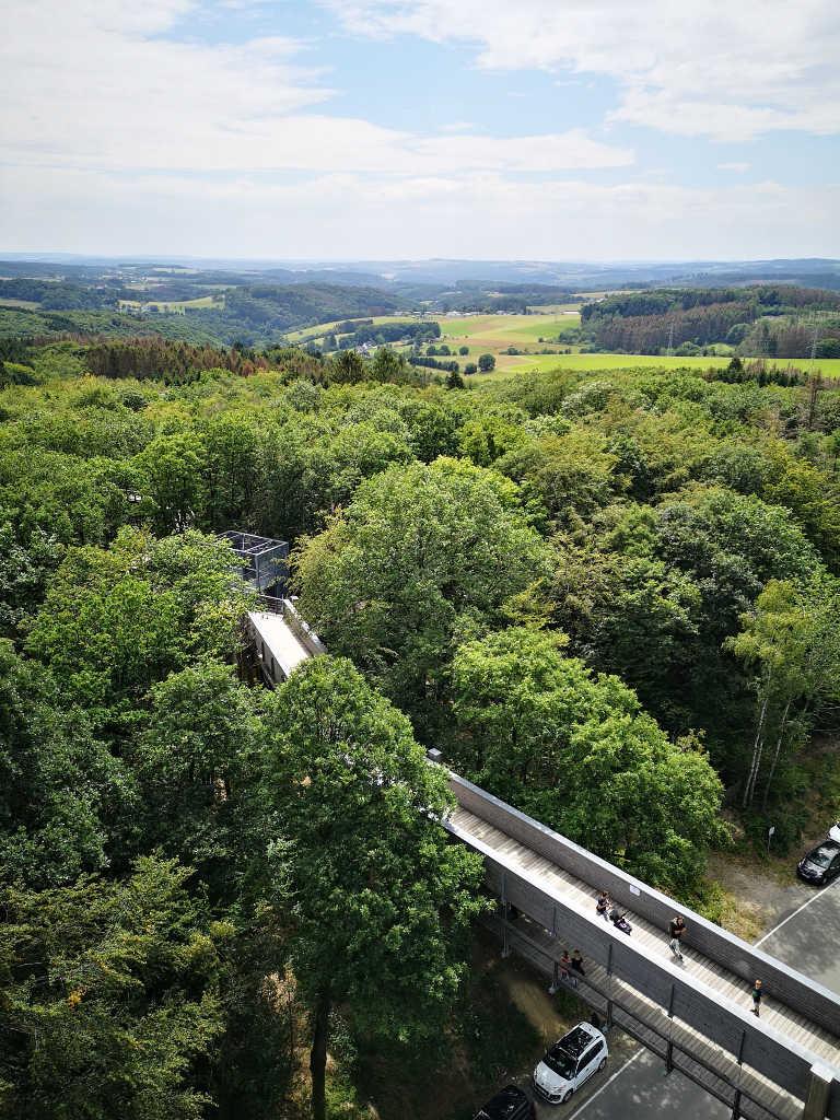Baumwipfelpfad in Waldbröl
