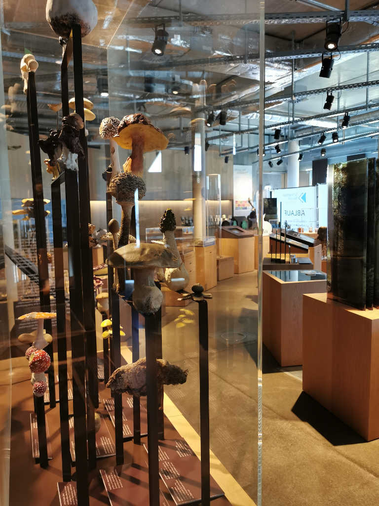 Science Center Ausstellung